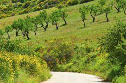 Route de Sicile